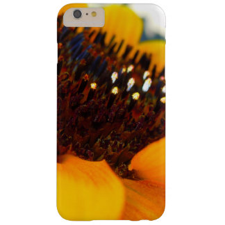 An Angled Sunflower Barely There iPhone 6 Plus Case