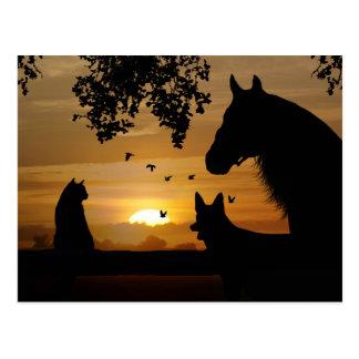 An Animal Lover's Delightful Postcard