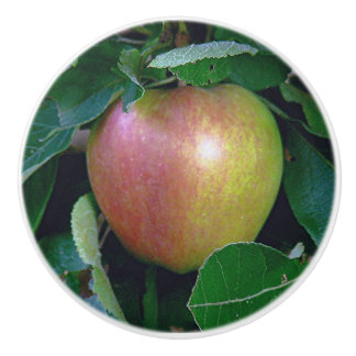 """AN APPLE"" CERAMIC KNOB"