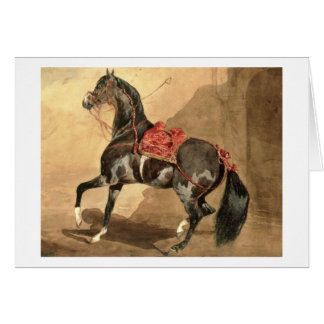 An Arabian Horse (w/c laid down on paper) Card