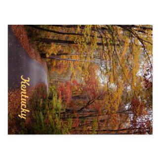 An Autumn Drive by JerseyFawn Postcard
