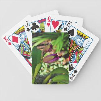 An Awakening- vertical Bicycle Playing Cards