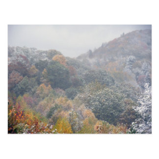 An Early Snow in the Fall Postcard