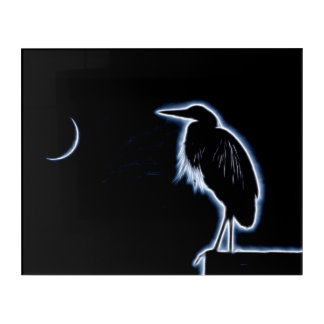 An Electric Blue Heron-Midnight Blue Background Acrylic Print