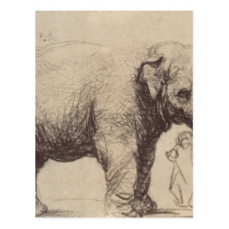 An Elephant by Rembrandt Postcard