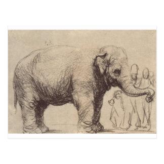 An Elephant by Rembrandt Postcard