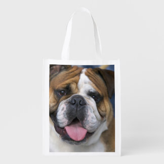 An english bulldog in Belgium. Reusable Grocery Bag