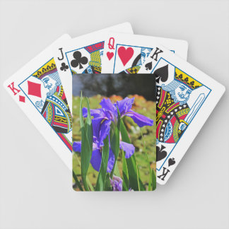 An Igniting Attraction I Bicycle Playing Cards