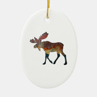 An Incredible Journey Ceramic Ornament