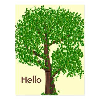 An Odd Tree Postcard