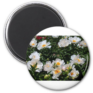 An Unrivaled Glimpse 2 Inch Round Magnet