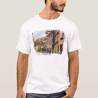 An unusually well-preserved medieval town on the T-Shirt