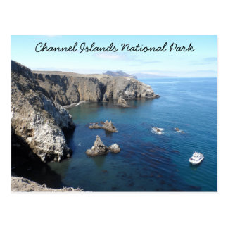 Anacapa Island- Channel Islands National Park Postcard