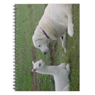 Anatolian Shepherd and Alpaca Cria Notebook
