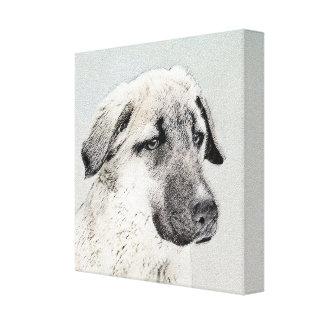 Anatolian Shepherd Canvas Print
