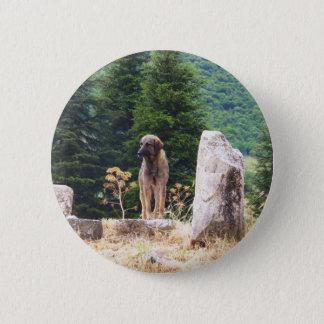 Anatolian Shepherd Dog -  Ephesus, Turkey 2 Inch Round Button