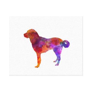 Anatolian Shepherd Dog in watercolor Canvas Print