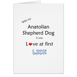 Anatolian Shepherd Dog Lick Design Greeting Card