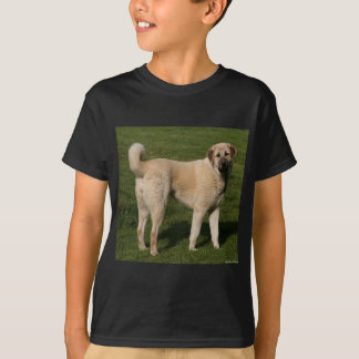 Anatolian Shepherd Dog T-Shirt