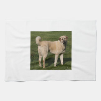 Anatolian Shepherd Dog Towels