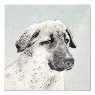 Anatolian Shepherd Magnetic Card