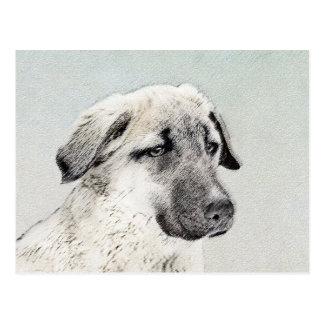 Anatolian Shepherd Painting - Original Dog Art Postcard