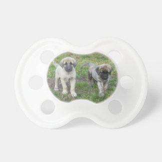 Anatolian Shepherd Puppies Dog Baby Pacifiers