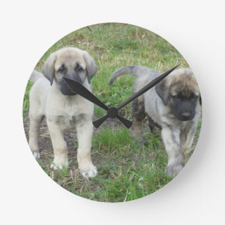Anatolian Shepherd Puppies Dog Wall Clock