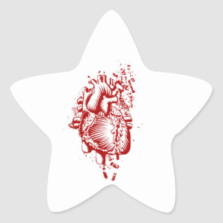 Anatomical Heart Star Sticker