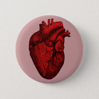Anatomical Human Heart 2 Inch Round Button