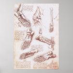 Anatomy Human Foot Skeleton Bones da Vinci Print