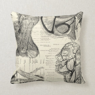 Anatomy Illustration Pillow
