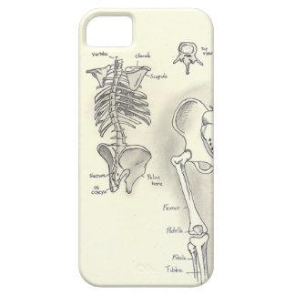 Anatomy iPhone 5 Case