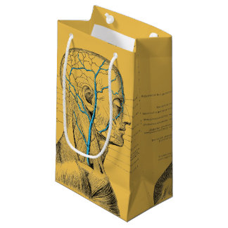 Anatomy - muscles - skull small gift bag
