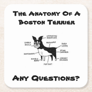 Anatomy Of A Boston Coaster