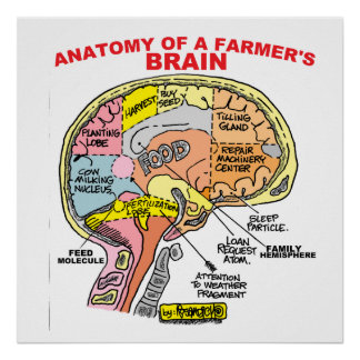ANATOMY OF A FARMER'S BRAIN POSTER