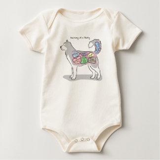 Anatomy of a Husky Apparel Baby Bodysuit