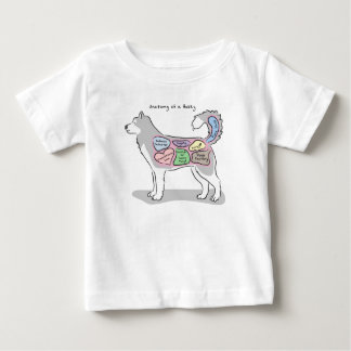 Anatomy of a Husky Apparel Baby T-Shirt