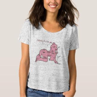 Anatomy of a Kitty Shirt