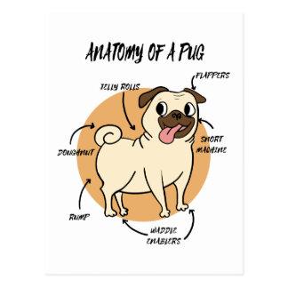 ANATOMY OF A PUG POSTCARD