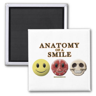 Anatomy of a Smile Magnet