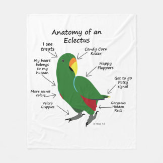 Anatomy of an Eclectus Fleece Blanket