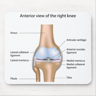 Anatomy of knee joint Mousepad