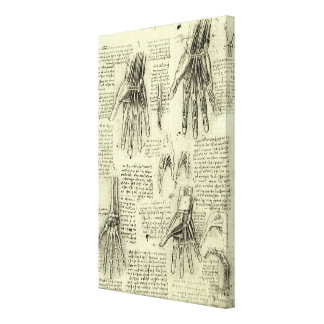 Anatomy of the Human Hand by Leonardo da Vinci Canvas Print