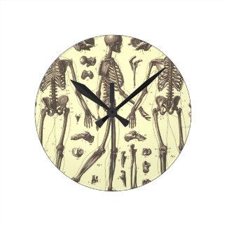 Anatomy Round Clock