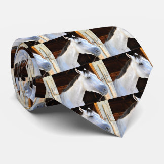 Anchor Down by Tapit Tie