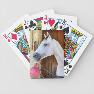 Anchor Down -Pletcher Bicycle Playing Cards