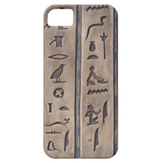 Ancient Carvings iPhone 5 Case