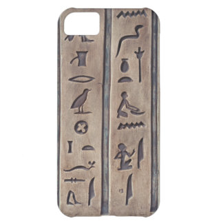 Ancient Carvings iPhone 5C Covers