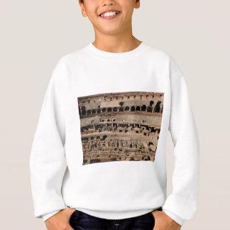 ancient crumble building sweatshirt